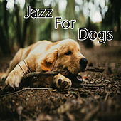 Jazz for Dogs by Various Artists