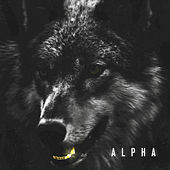 Alpha by Lord Big