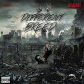 Different Breed by TrashBag Konan