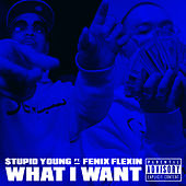 What I Want (feat. Fenix Flexin) von $tupid Young