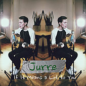 If It Means a Lot to You de Jurre