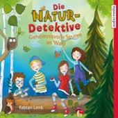Die Natur-Detektive (Geheimnisvolle Spuren im Wald) von Fabian Lenk
