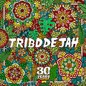 Come To The Vibe by Tribo de Jah