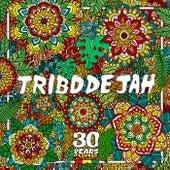 Come To The Vibe de Tribo de Jah
