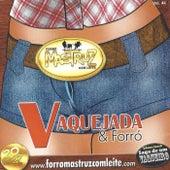 Vaquejada & Forró von Mastruz Com Leite