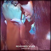 Remember When by Linus Flax