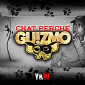 Chat perché de Guizmo