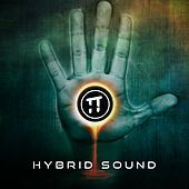 Hybrid Sound by Various Artists