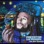 On Any Sunday by Predator Dub Assassins