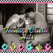 Teenage Crush Hits de Various Artists