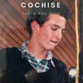Skate Neo Punk von Cochise