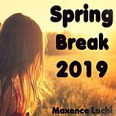 Spring Break 2019 by Maxence Luchi