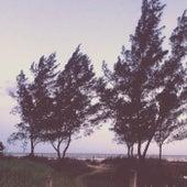 The Path To The Ocean de Lela Rosanelli