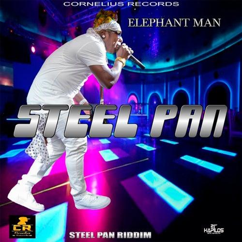 Steel Pan by Elephant Man