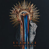 Super Human by Siamese