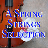 A Spring Strings Selection de Various Artists