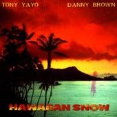 Hawaiian Snow de Various Artists