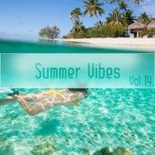 Summer Vibes Vol, 14 von Various Artists