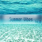 Summer Vibes Vol, 13 de Various Artists