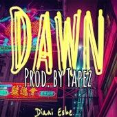 Dawn by Diani Eshe
