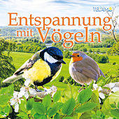 Entspannung mit Vögeln by Various Artists