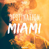 Destination Miami van Various