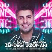 Zendegi Joonam by Alireza Talischi