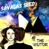 Find Your Way Home von Savalas Seed