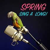 Spring Sing-A-Long! de Various Artists