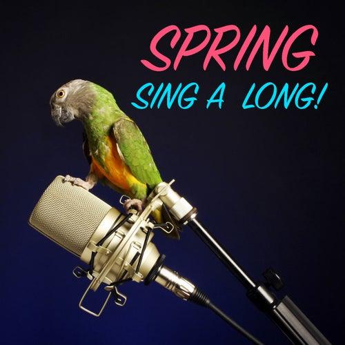 Spring Sing-A-Long! de Various Artists