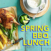 Spring BBQ Lunch by Various Artists