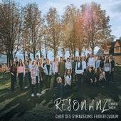 Resonanz - Die Stimmen Tanzen de Chor Des Gymnasiums Fridericianum