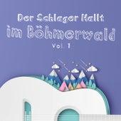 Der Schlager Hallt im Böhmerwald, Vol. 1 by Various Artists