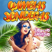 Cumbias Sonideras: Las Mas Sabrosas by Various Artists