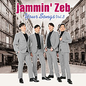 Your Songs (Vol.3) von Jammin' Zeb