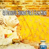 43 Peaceful Sounds for a Calm Mind von Massage Therapy Music