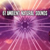 61 Ambient Natural Sounds von Lullabies for Deep Meditation