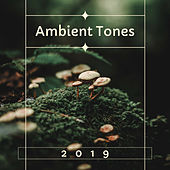 Ambient Tones 2019: Relaxing Mellow Beats with Nature Sounds by Spa Relaxation