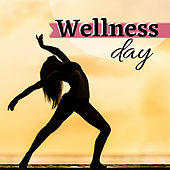 Wellness Day: New Age Instrumental Collection with Nature Sounds von Best Relaxing SPA Music