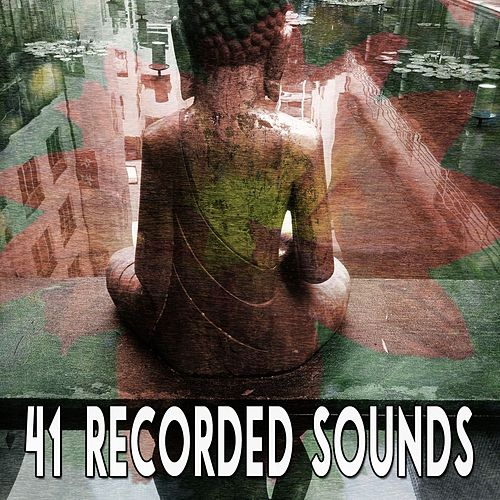 41 Recorded Sounds von Yoga Music
