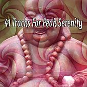 41 Tracks for Peak Serenity by Classical Study Music (1)