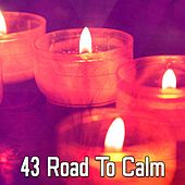 43 Road to Calm von Massage Therapy Music