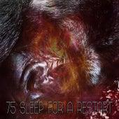75 Sleep for a Restart by Deep Sleep Music Academy