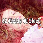 62 Fields of Sleep by Deep Sleep Relaxation
