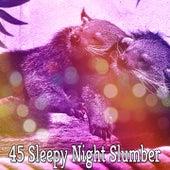45 Sleepy Night Slumber by Ocean Waves For Sleep (1)