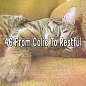 46 From Colic to Restful de Sounds Of Nature