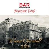Wiener Opernball 2019 de Frantisek Drafi