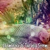 23 Embrace of the Wild Storm de Thunderstorm Sleep