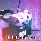 48 Life in Bed de Lullaby Land