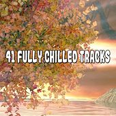 41 Fully Chilled Tracks de White Noise Babies
